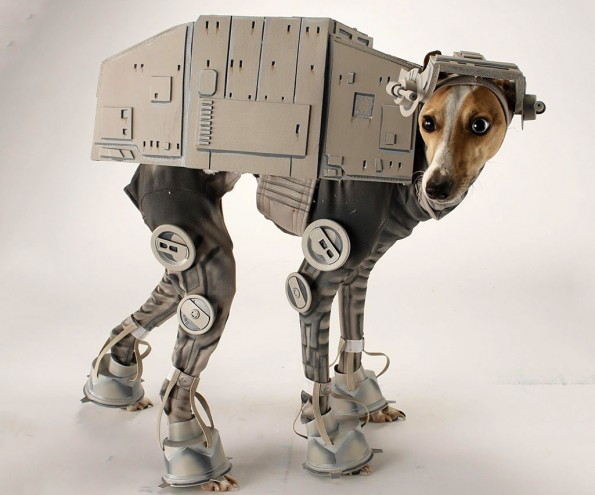 dog wearing robot costume