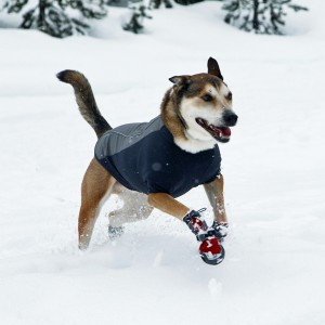 cloud-chaser-dog-jacket-ruff-wear-granite-gray-1